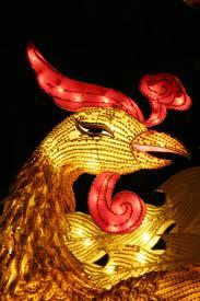 fire-phoenix